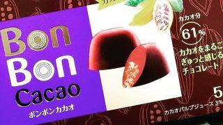 カカオパルプジュースやカカオニブが入った、森永製菓「BonBon cacao(ボンボンカカオ)」