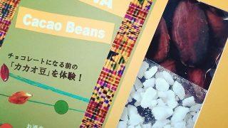 関東地区のファミマで買える!ショコラティエ パレ・ド・オール&ACEのカカオ豆セット