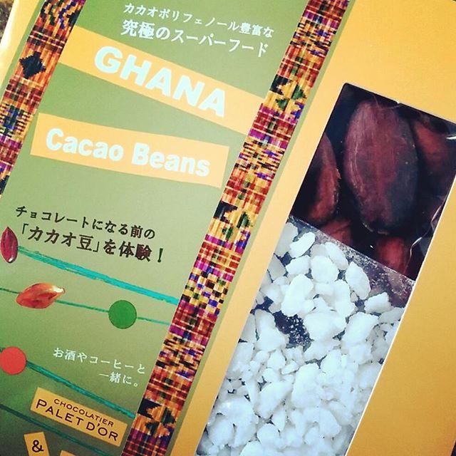 ショコラティエ パレ・ド・オール&ACEのカカオ豆セット
